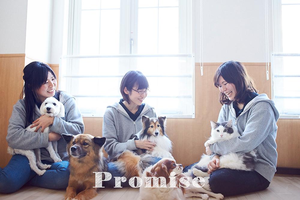 takanawa_Promise